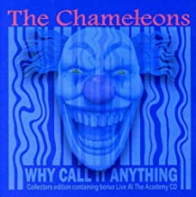 the chameleons why call it anything?