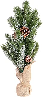 Best affordable christmas trees near me Reviews