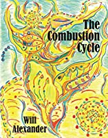 The Combustion Cycle