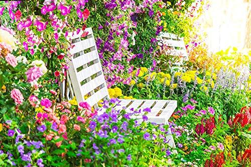 Soteer Garten - 200 Stück Hängende Petunien Blumensamen Blumenmischung Blumentaude Petunia Samen mehrjährig winterhart Leuchten Ihren Garten