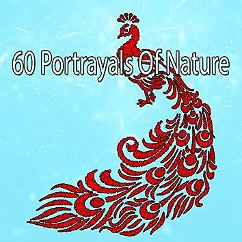 60 Portrayals Of Nature