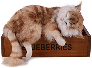 GlobalDeal Creative Simulation Cat Cute Slipper Kitten Doll Toys Animal Kids Gift Car Decor ( Brown )
