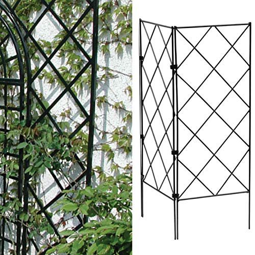 CALIDAKA 3pcs Plant Support Stakes for Potted Plants,Tomato Cages for Garden,Plant Cages Multi-Functional Reusable Garden Cages for Climbing Growing,Beans,Grapes,Chili Ect Vegetables