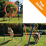 Fun and Sport Complete Dog Agility Course Equipment Set, Includes Agility Hurdle, Slalom Poles and the Jumping Hoop