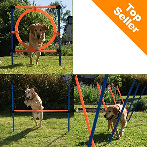 Fun & Sport Komplettes Agility-Trainings-Set für Hunde, inkl. Agility-Hürde, Slalomstangen und Springreifen