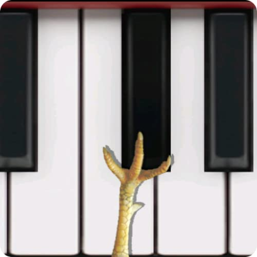 Chicken Piano
