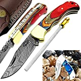 Pocket knife Multi Wood 6.5'' Damascus Steel knife Brass Bolster back lock Pocket Knives 100% Prime...