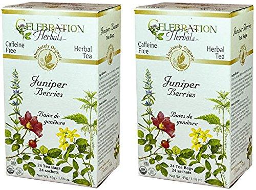 Celebration Herbals Organic Juniper Berries Tea Caffeine Free - 2 Pack (48 Teabags in Total)