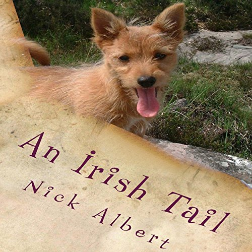 An Irish Tail audiobook cover art
