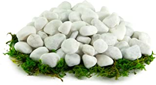 Southwest Boulder & Stone Porcelain White Pebbles | 20 lbs | Natural Rocks, White Stones for Potted Plants, Gardening, Succulents, Aquariums, Terrariums, and More 1 Inch - 2 Inch