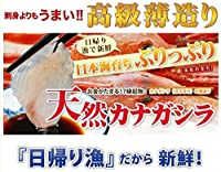 天然 ほうぼうの薄造り1~2人前90g×1皿 島根大田鮮魚市場 刺身よりも旨い高級薄造りだから味わえる旨味 日帰り漁のうまみをご堪能ください