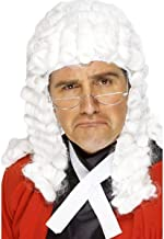裁判長 ウィッグ かつら 白髪、ホワイト ロングカール
