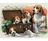 Riolis - Kit para Hacer una Pintura, Punto de Cruz, por qué los Perros