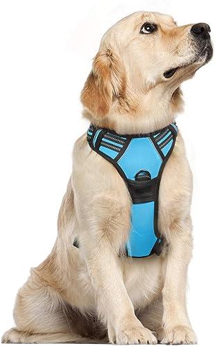 rabbitgoo Dog Harness, No-Pull Pet Harness with 2 Leash Clips, Adjustable Soft Padded Dog Vest, Reflective No-Choke P...