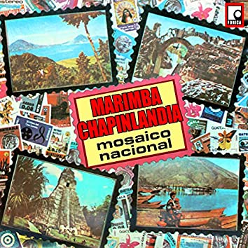 Mosaico Nacional