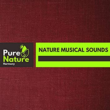 Nature Musical Sounds