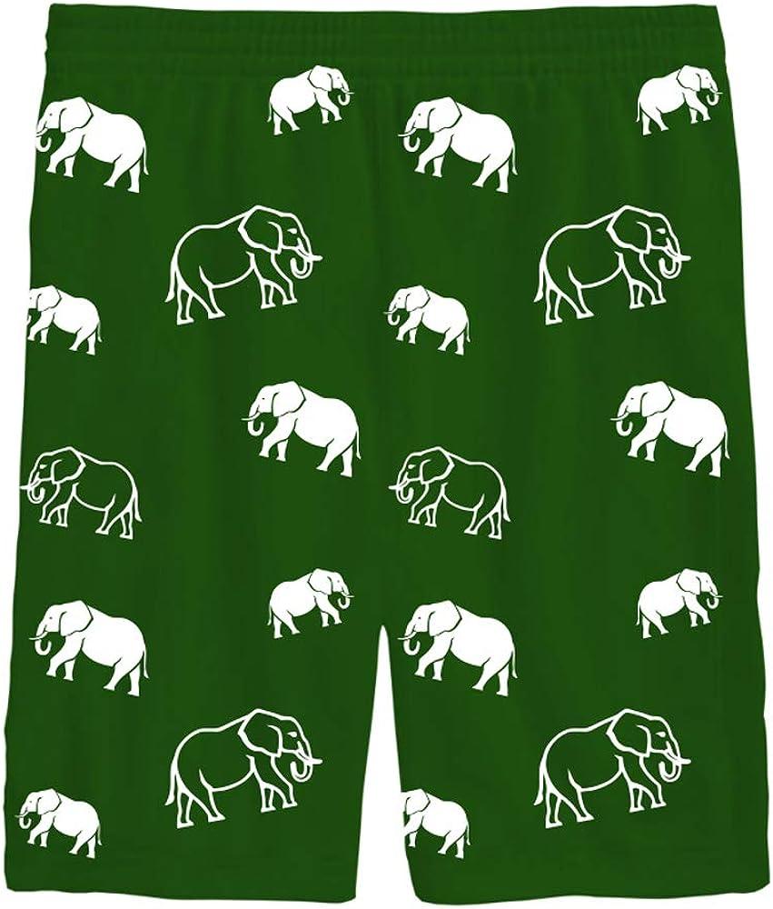 Idakoos Animals Boys Kids Pajamas 100/% Cotton 2 Pieces Short Sets PJS