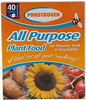 Phostrogen All Purpose Plant Food 400 g