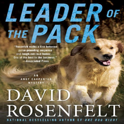 Leader of the Pack audiobook cover art