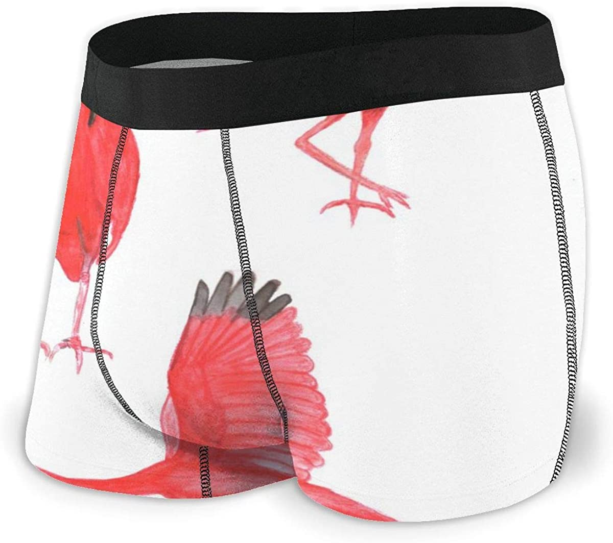 Mens Boxer Briefs Scarlet Ibises Pretty Birds Boys Trunks Underwear Short Leg Breathable Man