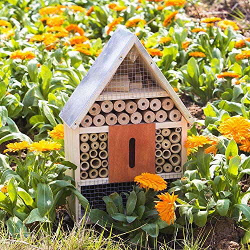 FUNPENY Bee House, Wooden Backyard Hanging Bamboo Tube Insect Hotel for Butterfly, Garden Bees and Ladybugs (Large)