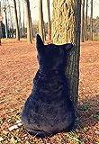 Kenmont Süße Katze Form Kissen Weichem Plüsch kissenpolster Sofa Baumwolle Plüschtiere für Haus Dekoration Entspannen Sie sich und Kinder Mädchen Geschenke (Schwarz, 45cm) - 3