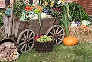 Yeele 10x6.5ft Autumn Harvest Festival Background for Photography Fruit Vegetables Harvest Wood Cart Haystack Photo Backdrop Thanksgiving Party Decor Photo Shoot Props