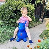 Yorten Bouncy Balls Best Gifts Heavy Duty Rubber Hopper Animal Toy Hopper Animal Toy Jumping and Riding Horse Bouncing Horse More Safety Than & Hand Air Pump