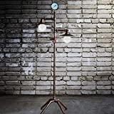 LITFAD 2 Heads Saucer Shade Floor Lamp with Water Pipe Retro Style Industrial Metal Floor Lamp for Living Room Dining Room Restaurant