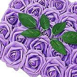 15 Best Carson Lilacs