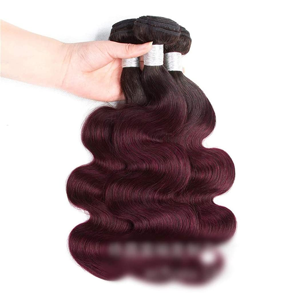 歯車住人大陸YESONEEP ワインレッドの人間の髪の毛の織りバンドルナチュラルヘアエクステンション横糸 - ボディウェーブ - 1B / 99Jワインレッド(1バンドル、100g)ロングカーリーウィッグ (色 : ワインレッド, サイズ : 22 inch)