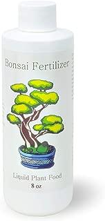 pyracantha bonsai pruning