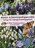mgc24 Bienen- & Schmetterlingsparadies Traubenhyazinthen, bunte Blumenzwiebelmischung aus farbenfrohen Frühjahrsblüher, 40 Stück