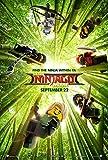Poster The Lego Ninjago Movie 70 X 45 cm