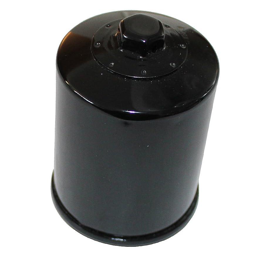 Caltric Oil Filter Fits YAMAHA 1300 FJR1300 FJR-1300 ABS FJR13 Electric Shift 2003-2006