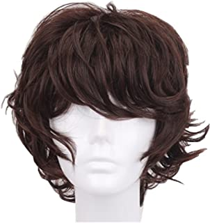 God's Hand 13 Inch Dark Brown Short Curly Anime Cosplay Wigs with Bang for Men Boys Girls Costume Halloween Party (dark brown)