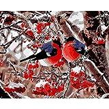 FBDBGRF Pintar por Número Pájaro En La Rama para Adultos Y Niños DIY Kit De Regalo De Pintura Al Óleo con Juego De Pintura Digital para Decoración del Hogar Lienzos para Pintar