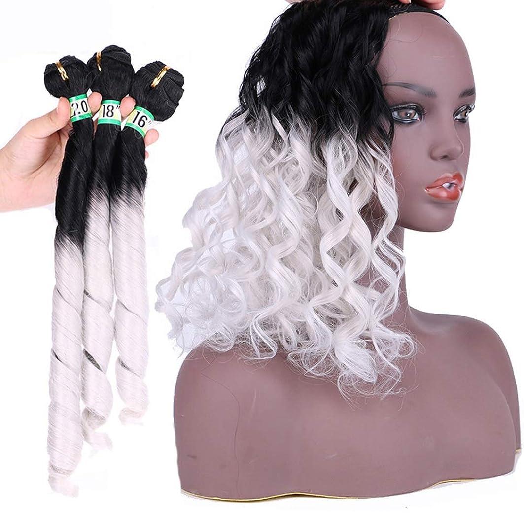 排出葉を集めるバイオリニストYrattary 3バンドル人工毛ブラジル春巻き毛の織り方の拡張 - T1 / GRAYグラデーション複合毛レースのかつらロールプレイングかつら長くて短い女性自然 (色 : Silver gray, サイズ : 18