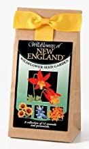 New England Wildflower Seed Mix - A Beautiful Collection of Twelve Annuals & Perennials - Enjoy The Natural Beauty of New England Flowers in Your Own Home Garden