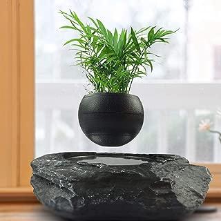 Portable Levitating Potted Floating Pot Air Bonsai Magnetic Suspension Levitating Flower Plant - Creative Design Levitation Bonsai - Home Office Decorations - Fun Gift,Black-Large