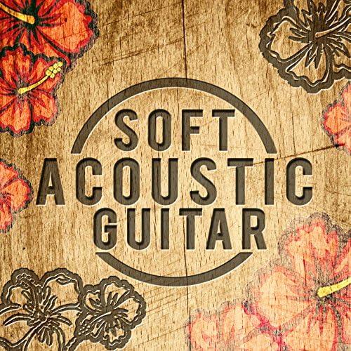 Instrumental Guitar Music & Soft Guitar Music