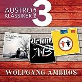 Songtexte von Wolfgang Ambros - Austro Klassiker hoch 3