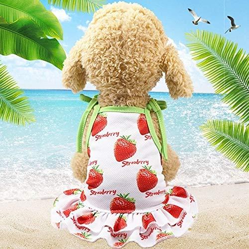 Jsansui huwelijkspak voor honden, huisdieren, fruit, T-shirt, bedrukt met puppy en katten, schattige rok, voor kleine honden, chihuahua, zomerjurk, puppy, maat Pomeran: XXL, Skirt-Strawberry
