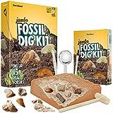 Mega Kit Scava Fossili - Estrai 15 Veri Fossili (Ossa di Dinosauro, Denti di Squalo, ed Altro) - Fantastico Regalo di Scienza, Archeologia, Paleontologia, per Bambini e Bambine - Gioco di Escavazione