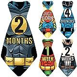 Original Stick'Nsnap (TM) 17 Baby Monthly Necktie Onesie Stickers -'Happy Heroes' (TM) Milestones for 12 Months +5 Bonus Milestones - Great Baby Shower Gift