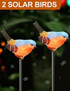 led bird lights