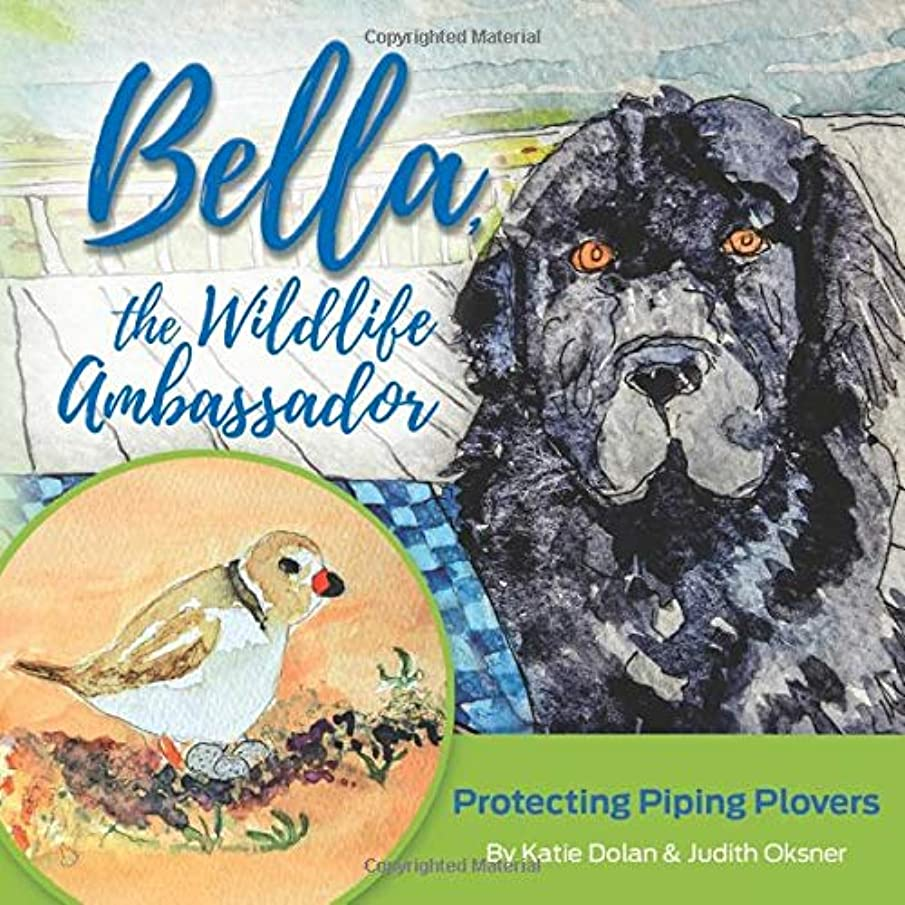 Bella, The Wildlife Ambassador: Protecting Piping Plovers