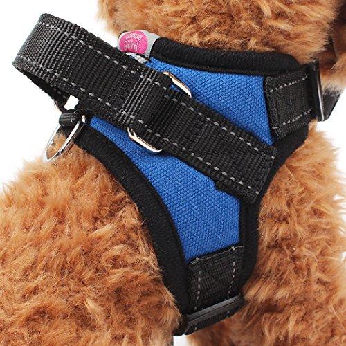 Gililai Harnais réglable pour chien avec poignée sur le dessus - Idéal pour la marche, la randonnée et l'entraînement - 4 couleurs et 4 tailles (petit, bleu)