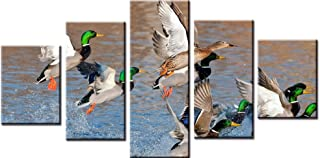 Wowdecor Canvas Prints 5 Pieces Multiple Pictures Wall Art - 5 Panels Water Ducks Giclee Pictures Painting Printed on Canvas, Posters Wall Decor Gift - UNFRAMED (Large)