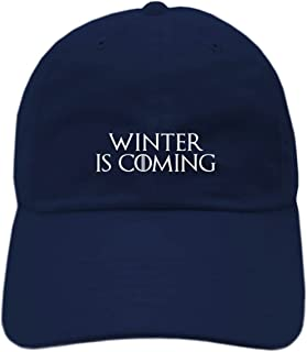 Game of Thrones Inspired Winter is Coming Embroidered Dad Hat